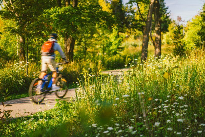 Oak Ridge Reserve